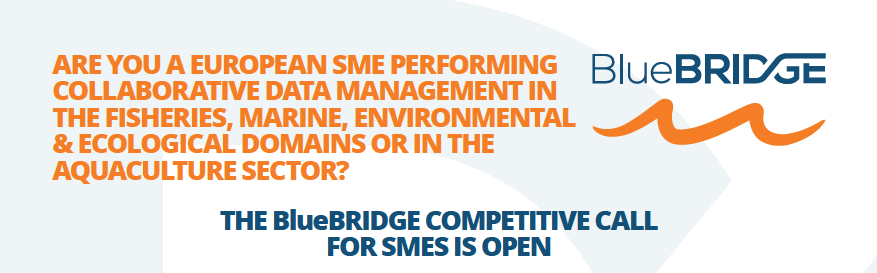 The BlueBRIDGE Competitive Call for SMEs
